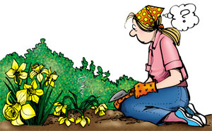Elly, in gardening gear, looks at her wilted daffodils in confusion.